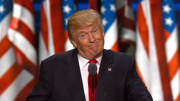 Donald Trump en rational irrationality